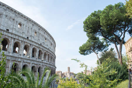 Colosseum surroundings with a city in the background and green summer plants nearby