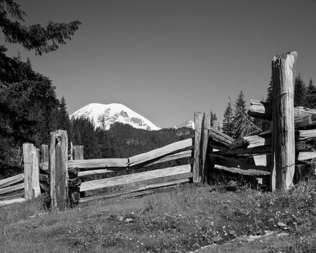 split rail: Monochrome picture of Mount Rainier with split rail fence and meadow