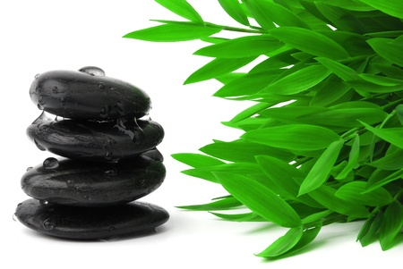 Black stones and bamboo leaves  photo