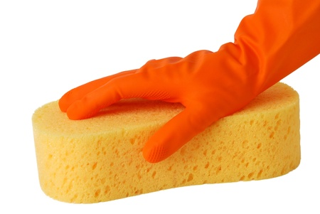 janitorial: Gloved hand with a yellow sponge