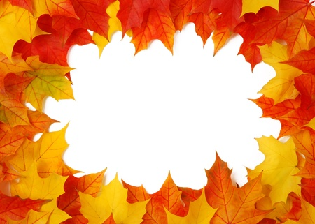 Fall leaves frame Stock Photo - 10571728