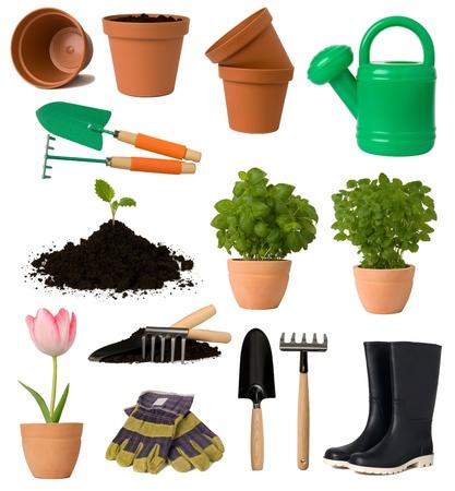 regando plantas: Jardiner�a colecci�n