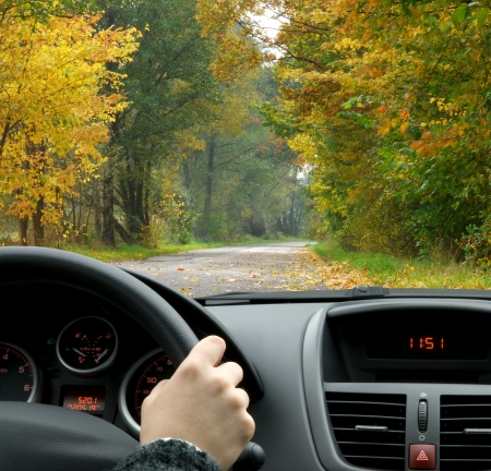 woman driving car: Driving in fall