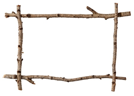 birch: Twig frame