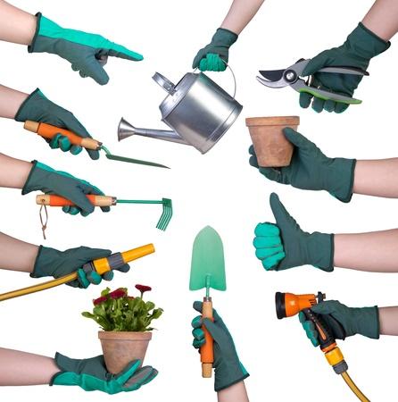 Hand in een handschoen bedrijf tuingereedschap op een witte achtergrond Stockfoto
