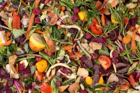 rotten fruit: Pile of composting natural waste