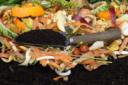 Compost with composted soil Stockfoto