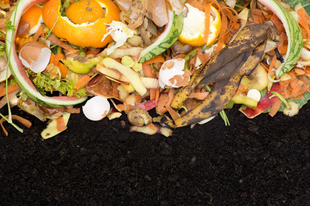 Compost with composted soil Banque d'images