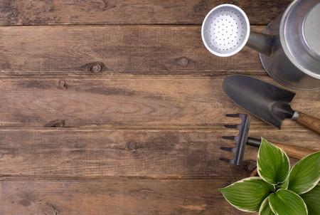 Herramientas de jardinería o el fondo de madera con espacio de copia