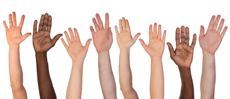 the hands: Many hands up isolated on white background