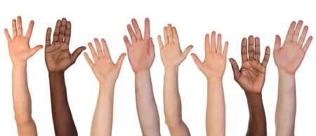 Vele handen omhoog op een witte achtergrond Stockfoto