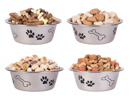 Dog food in bowls isolated on white background