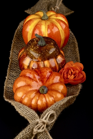 Thanksgiving decoration on a canvas laid on a black background Stock fotó