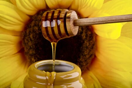 honey comb: Honey dripping into a pot,sunflower in the background Stock Photo