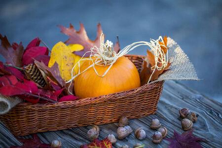 autumn arrangement: Autumn arrangement of pumpkin