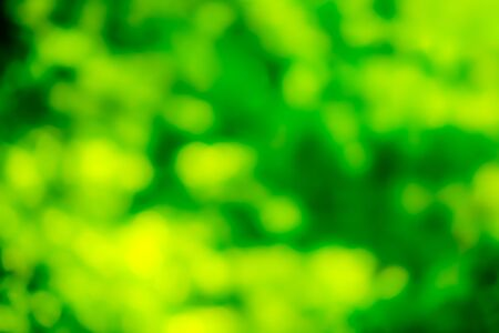 Green and yellow blurred style background, texture bokeh style