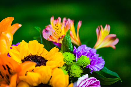 Bouquet of various fresh colorful flowers on a green blurred background