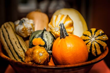 Fresh multicolored decorative pumpkins in a wooden bowl. Autumn colors, thanksgiving decorations.