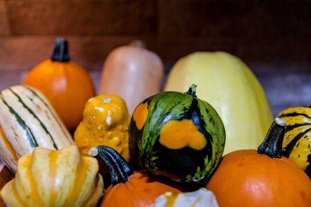 Fresh multicolored decorative pumpkins. Autumn colors, thanksgiving decorations.