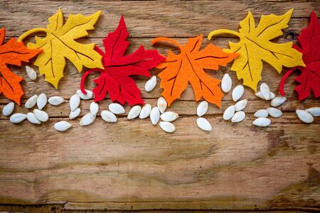 Colorful autumn leaves and pumpkin seeds over wooden background, fall background border with copy space.