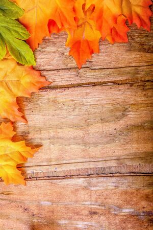 Colorful autumn leaves over wooden background, fall background border with copy space. Stok Fotoğraf