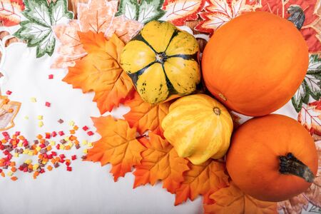 Autumn composition, pumpkin and squash. Halloween or Thanksgiving background.