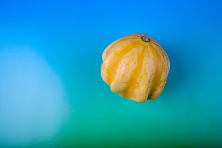 Ornamental squash on a colorful background, view from above. Holiday decorative vegetables.