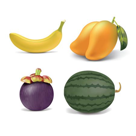 mangosteen: tropical flesh fruits set