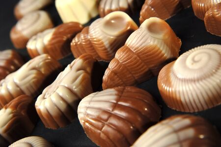 sweet shell shape chocolates on black          photo