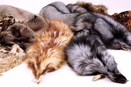 pelage: several furs isolated at white background