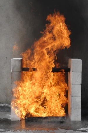 spunk: fire flames for test at the factory
