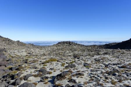View from Mt Taranaka NZ