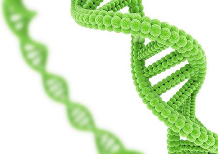 Groen DNA.