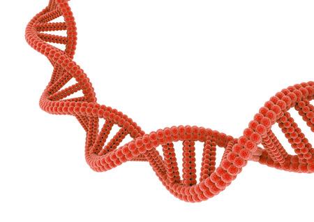 Red DNA. Фото со стока - 82238191