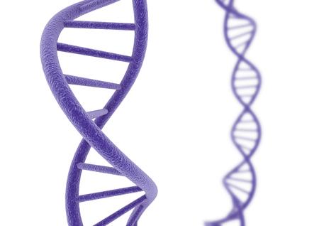 Paars DNA.
