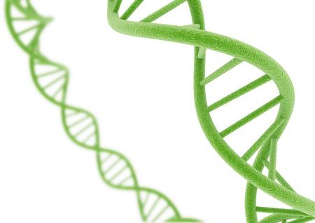 Green DNA. Фото со стока