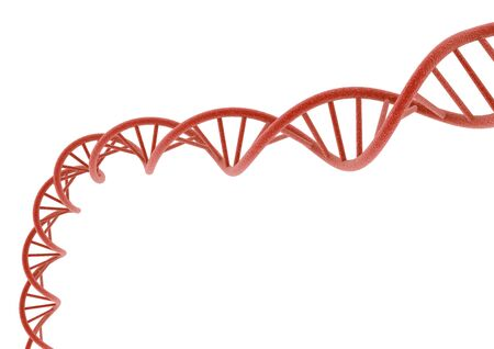 deoxyribonucleic acid: red DNA Stock Photo