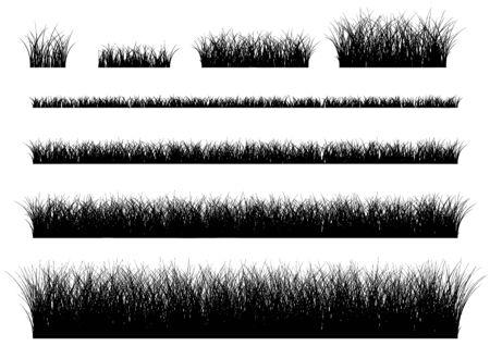 Vector gras geïsoleerd op een witte achtergrond.