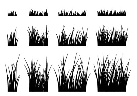 Vector grass isolated on a white background. 向量圖像