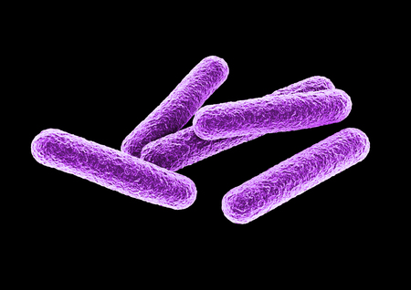 3D rendering of a bacteria.