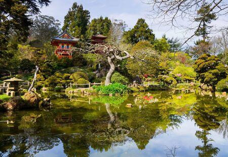 Japanese Tea Garden in San Francisco photo