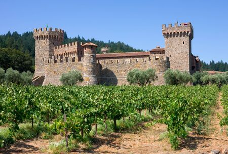 Napa Valley vineyard and castle Stock Photo - 11725605
