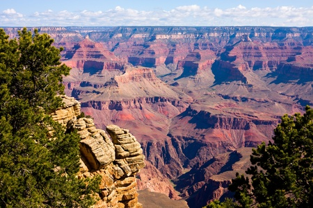 grand canyon national park: Grand Canyon on a sunny day, Arizona