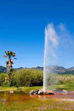 Old Faithful Geyser in Napa Valley, California 免版税图像
