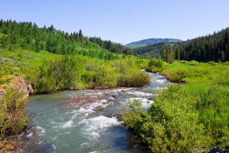 Countryside with a creek in Idaho State photo