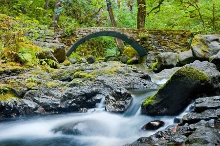 Streams in Columbia River Gorge, Oregon