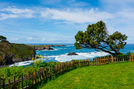 california coast: California Coast in Mendocino Stock Photo