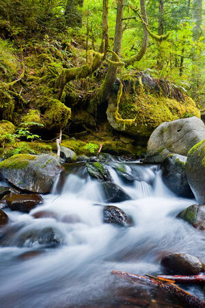 northwest: Waterfalls in the Columbia River Gorge, Oregon