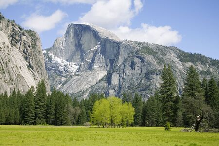 view of half dome from meadow in yosemite national park california usa.
