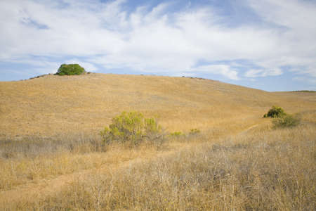 hiking path through an open field Imagens